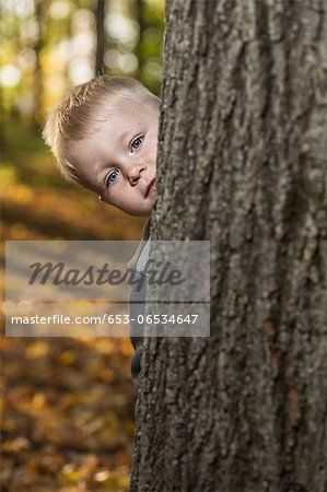 A young boy peeking from behind a tree trunk Stock Photo - Premium Royalty-Free, Image code: 653-06534647