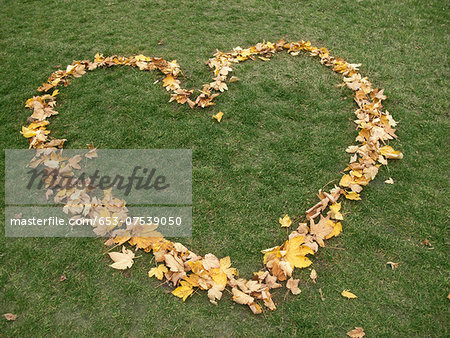 Heart shape made from autumn leaves on grass Stock Photo - Premium Royalty-Free, Image code: 653-07539050