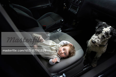 Baby girl and Portuguese Water Dog in car Stock Photo - Premium Royalty-Free, Image code: 653-07761356