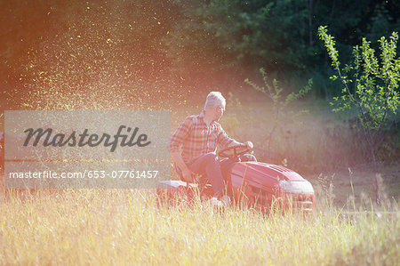 Mature man driving lawn mower in garden Stock Photo - Premium Royalty-Free, Image code: 653-07761457