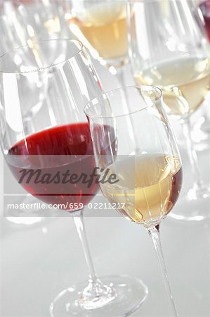 Glasses of different types of wine Stock Photo - Premium Royalty-Free, Image code: 659-02211217