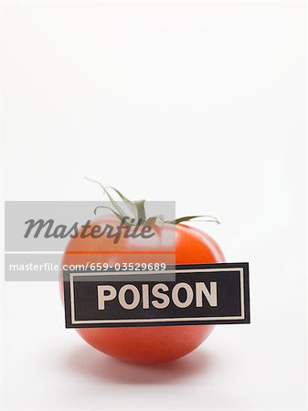 Tomato with a 'POISON' label Stock Photo - Premium Royalty-Free, Image code: 659-03529689