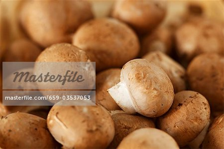 Chestnut mushrooms Stock Photo - Premium Royalty-Free, Image code: 659-03537053