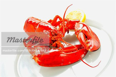 Boiled lobster with a slice of lemon Stock Photo - Premium Royalty-Free, Image code: 659-06187845