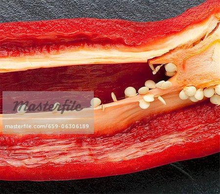 Red Pepper Sliced to Reveal Seeds and Ribs Stock Photo - Premium Royalty-Free, Image code: 659-06306189