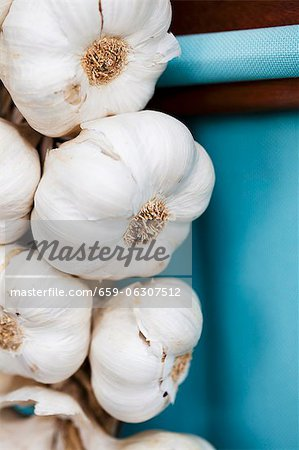 Garlic bulbs hanging up Stock Photo - Premium Royalty-Free, Image code: 659-06307512