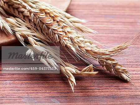 Various ears of grain on a wooden surface Stock Photo - Premium Royalty-Free, Image code: 659-06373133