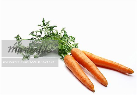 Three carrots with leaves Stock Photo - Premium Royalty-Free, Image code: 659-06671321