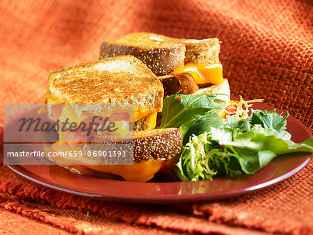 Grilled Cheese and Tomato Sandwich;Quartered and Stacked; Side Salad Stock Photo - Premium Royalty-Free, Image code: 659-06901391