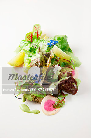 Mixed lettuce with cucumber, radish and edible flowers Stock Photo - Premium Royalty-Free, Image code: 659-07068575
