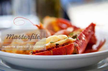 Lobster in a White Bowl; On an Outdoor Table at a Restaurant in the South of France Stock Photo - Premium Royalty-Free, Image code: 659-07068601