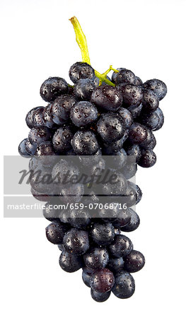 Red grapes Stock Photo - Premium Royalty-Free, Image code: 659-07068716
