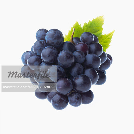 Red grapes Stock Photo - Premium Royalty-Free, Image code: 659-07069026