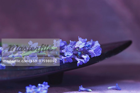 Lavender in a wooden bowl Stock Photo - Premium Royalty-Free, Image code: 659-07598002