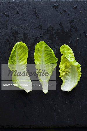 Three lettuce leaves Stock Photo - Premium Royalty-Free, Image code: 659-07598752