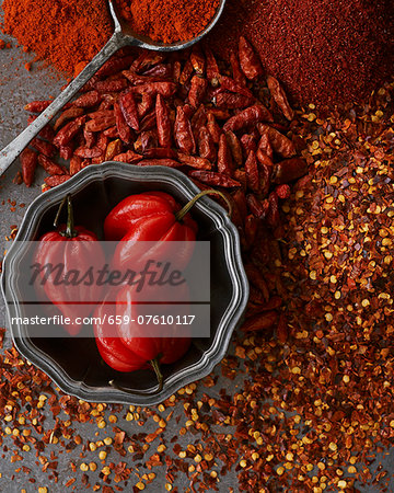 An arrangement of chillis as a spice Stock Photo - Premium Royalty-Free, Image code: 659-07610117