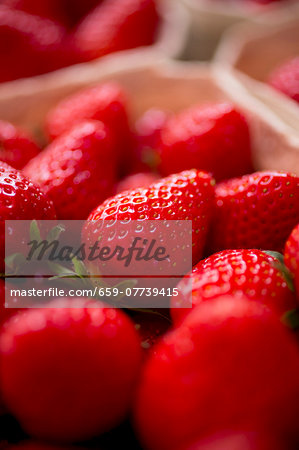 Fresh strawberries in a paper punnet (close-up) Stock Photo - Premium Royalty-Free, Image code: 659-07739415