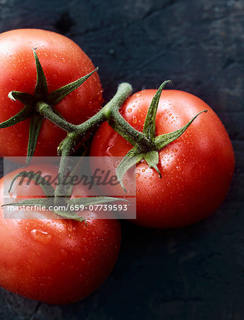 Tomatoes on the vine Stock Photo - Premium Royalty-Free, Image code: 659-07739593