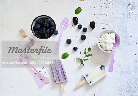 Homemade blueberry ice cream and ingredients Stock Photo - Premium Royalty-Free, Image code: 659-07958940