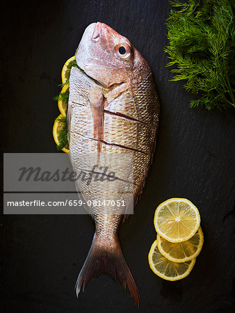 A red snapper on a black slate with lemon slices Stock Photo - Premium Royalty-Free, Image code: 659-08147051