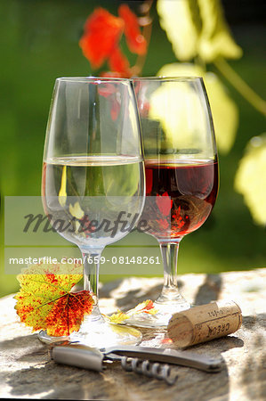 A glass of red wine and a glass of white wine Stock Photo - Premium Royalty-Free, Image code: 659-08148261