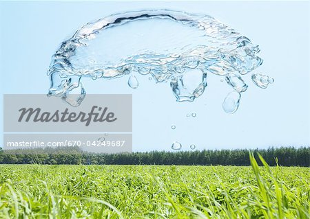Grassland and bubbles Stock Photo - Premium Royalty-Free, Image code: 670-04249687