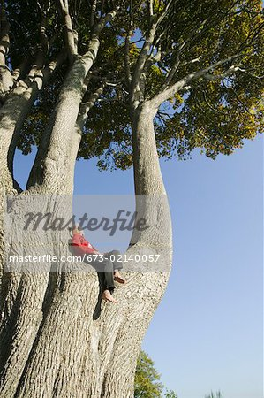 Woman relaxing in huge tree Stock Photo - Premium Royalty-Free, Image code: 673-02140057