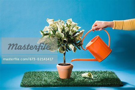 Woman watering money tree Stock Photo - Premium Royalty-Free, Image code: 673-02141417