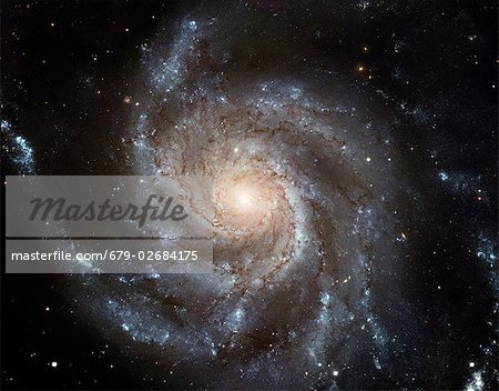 Spiral galaxy M101, Hubble Space Telescope image. M101 is also known as the Pinwheel Galaxy. It lies around 25 million light years from Earth in the constellation Ursa Major. The disc of the galaxy is some 170,000 light years across, nearly twice as wide as our own Milky Way. The spiral arms appear blue as they contain hot young stars. The central nucleus is yellow as the stars there are older, an Stock Photo - Premium Royalty-Free, Image code: 679-02684175
