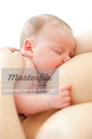 Newborn baby breastfeeding Stock Photo - Premium Royalty-Free, Image code: 679-05797317
