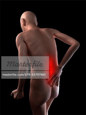 Back pain, conceptual artwork Stock Photo - Premium Royalty-Free, Image code: 679-05797983