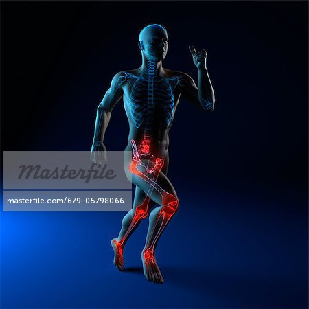 Running injuries, conceptual artwork Stock Photo - Premium Royalty-Free, Image code: 679-05798066