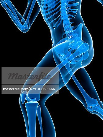 Running skeleton, artwork Stock Photo - Premium Royalty-Free, Image code: 679-05798666