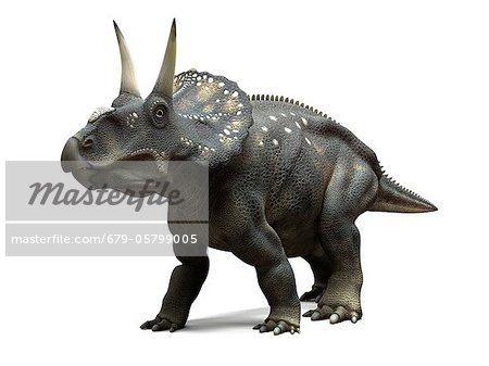 Nedoceratops dinosaur, artwork Stock Photo - Premium Royalty-Free, Image code: 679-05799005
