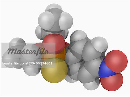 Parathion, molecular model. Organophosphate compound used as insecticide and acaricide, toxic to human beings and animals. Atoms are represented as spheres and are colour-coded: carbon (grey), hydrogen (white), nitrogen (blue), oxygen (red), phosphorus (orange) and sulfur (yellow). Stock Photo - Premium Royalty-Free, Image code: 679-05994601