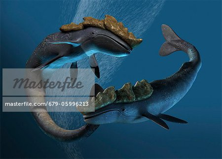 Leviathan sea monsters, computer artwork. Stock Photo - Premium Royalty-Free, Image code: 679-05996213