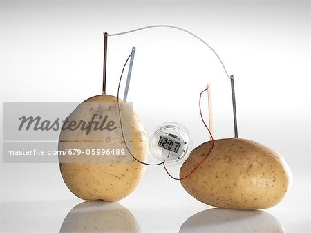 Potato clock. A chemical reaction between the copper and zinc plates and the potatoes produces a small current, that is able to power a light bulb. Stock Photo - Premium Royalty-Free, Image code: 679-05996489