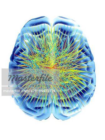 Brain and circular network diagram, depicting neural connections in the brain. Stock Photo - Premium Royalty-Free, Image code: 679-06672774