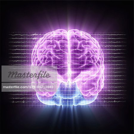 Brain activity. Computer artwork of EEG (electroencephalogram) traces superimposed over a brain illustration. An EEG records the brain's activity. Stock Photo - Premium Royalty-Free, Image code: 679-06713840