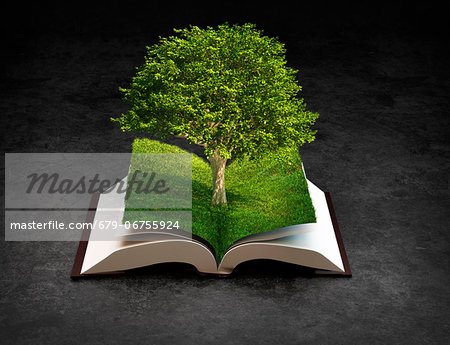 Knowledge, conceptual computer artwork. Stock Photo - Premium Royalty-Free, Image code: 679-06755924