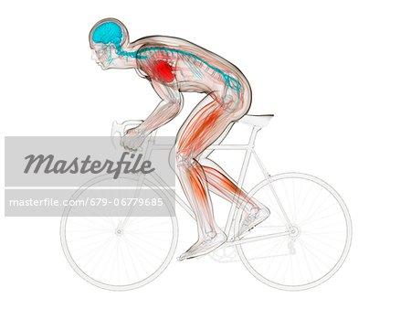 Cyclist, computer artwork. Stock Photo - Premium Royalty-Free, Image code: 679-06779685