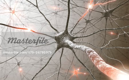 Neural network, computer artwork. Stock Photo - Premium Royalty-Free, Image code: 679-06780979