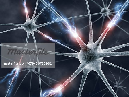 Neural network, computer artwork. Stock Photo - Premium Royalty-Free, Image code: 679-06780981