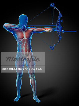 Archer, computer artwork. Stock Photo - Premium Royalty-Free, Image code: 679-07603027