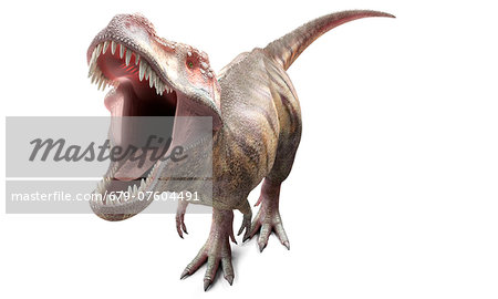 T-Rex, computer artwork. Stock Photo - Premium Royalty-Free, Image code: 679-07604491
