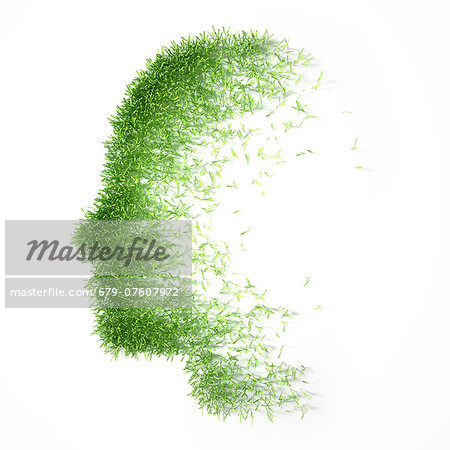 Artwork of grass representing the human mind, psychology concept. Stock Photo - Premium Royalty-Free, Image code: 679-07607972