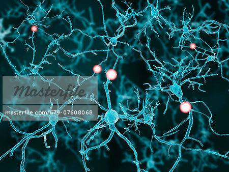 Artwork of nerve cells. Stock Photo - Premium Royalty-Free, Image code: 679-07608068
