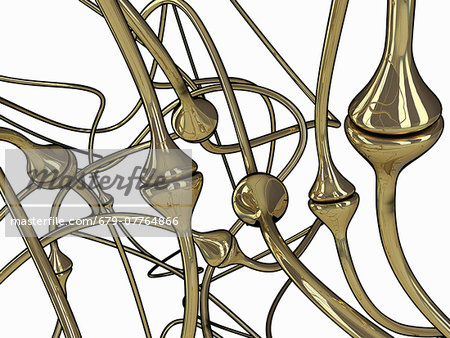 Synapses, computer artwork. Stock Photo - Premium Royalty-Free, Image code: 679-07764866