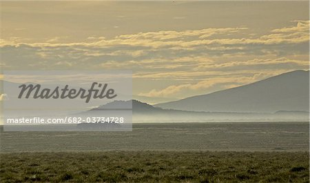 Early morning mist around twin hills, Serengeti, Tanzania Stock Photo - Premium Royalty-Free, Image code: 682-03734728