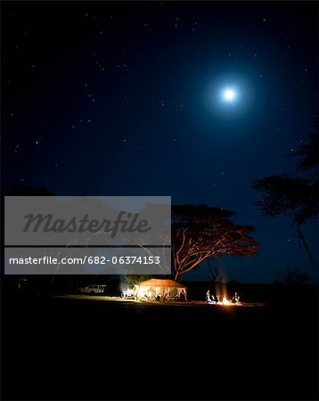 Camping under fever tree and full moon, Laikipia, Kenya Stock Photo - Premium Royalty-Free, Image code: 682-06374153